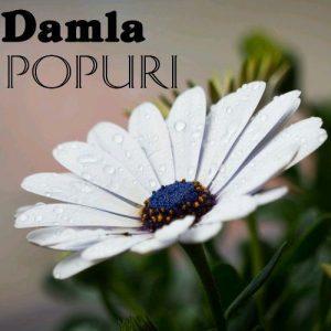 دانلود آهنگ آذری جدید Damla به نام Popuri